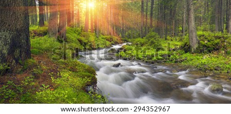 River at sunrise in the Carpathian forest - fast jet of water at slow shutter speeds give a beautiful fairy-tale effect. Ukraine is rich in water resources in the Carpathian Mountains is  good ecology - stock photo