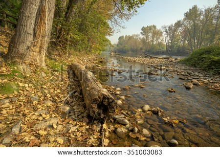 River in Boise Idaho in the fall with a log - stock photo