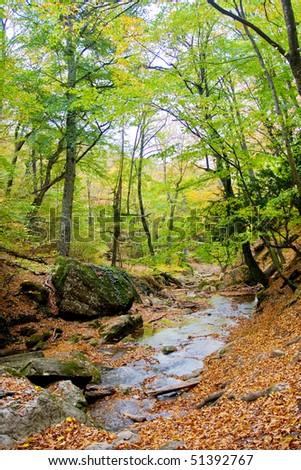 River in spring season - stock photo