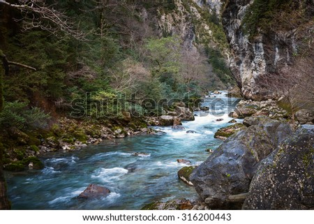 River in the forest flowing over rocks - stock photo