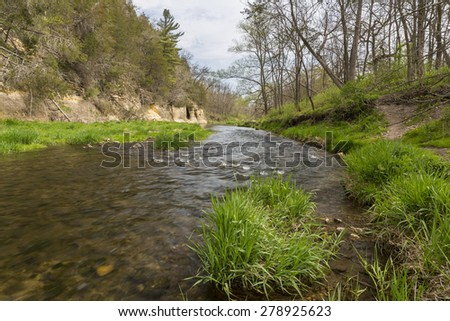 River In Woods During Spring - stock photo