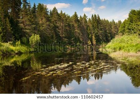River Kolpa Vologda region - stock photo
