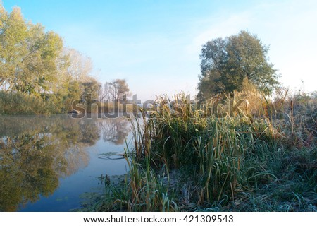 River landscape and autumn wood . - stock photo