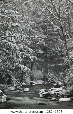 River running through snow covered trees, Stowe, Vermont, USA - stock photo