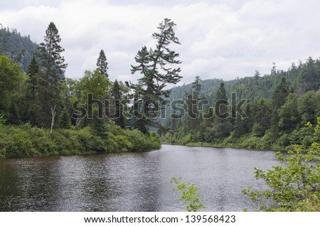 River shore on a overcast summer day - stock photo