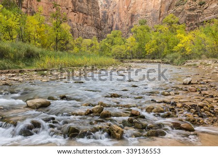 River stones in the Virgin River with Autumn color in Zion Canyon in Zion National Park, Utah - stock photo