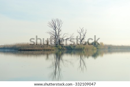 River with tree reflected in the Delta of the Volga River, Russia - stock photo