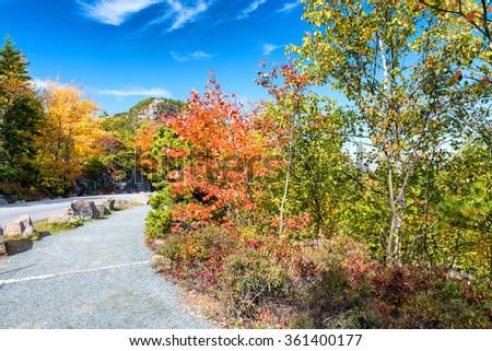 Road across foliage, New England. - stock photo