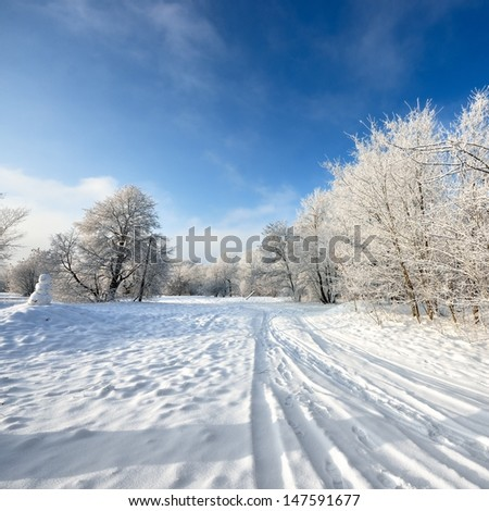 road and hoar-frost on trees in winter - stock photo