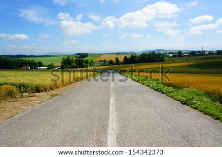 Road and wheat field, north of Japan - stock photo