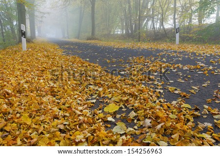 road, autumn, fog, foliage - stock photo