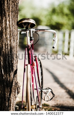 Road bicycle on city street. Green park and trees outdoors, urban scene bike under a tree, copy space and shallow depth of field, vintage old retro bike, cycling or commuting in city urban environment - stock photo