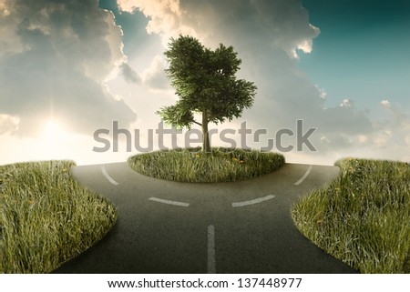 Road bifurcation with tree between in a countryside landscape - stock photo