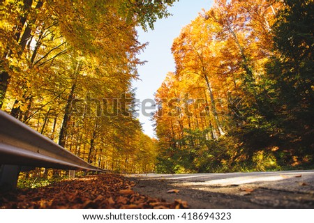 road coming through golden autumn forest - stock photo