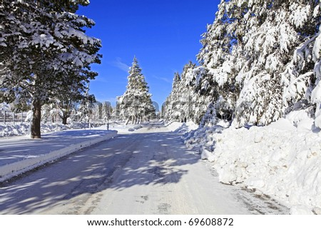 Road covered in snow after night of snow storm - stock photo