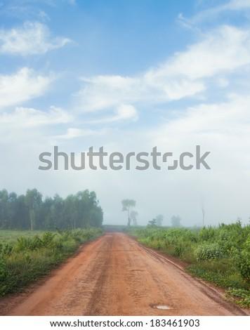 road fog outdoor - stock photo