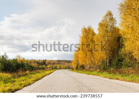 Road in autumn forest on a sunny day - stock photo