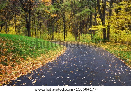 Road in autumn park. Nature composition. - stock photo