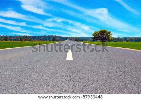 Road in field on sunny day with alone tree near - stock photo