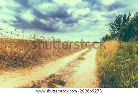 Road In Field With Ripe Wheat And Blue Sky With Clouds - stock photo