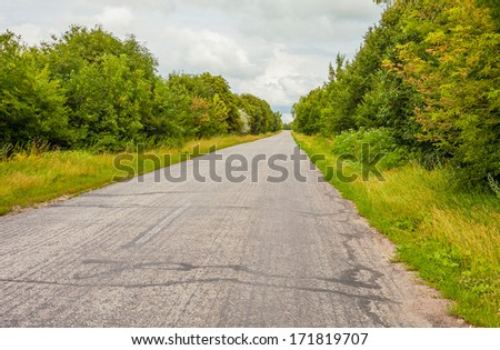 road in forest - stock photo