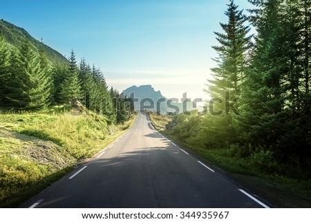road in mountain, Lofoten islands, Norway - stock photo