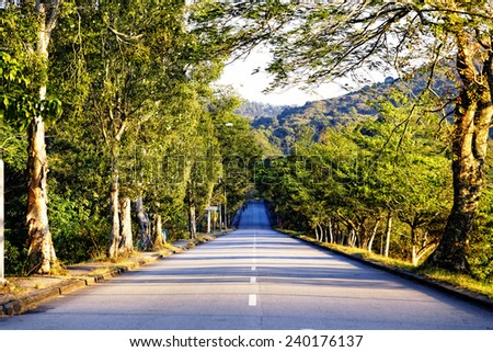 road in mountains at sunset - stock photo