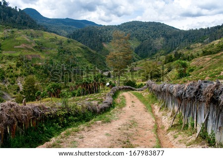 Road in mountains, New Guinea  - stock photo