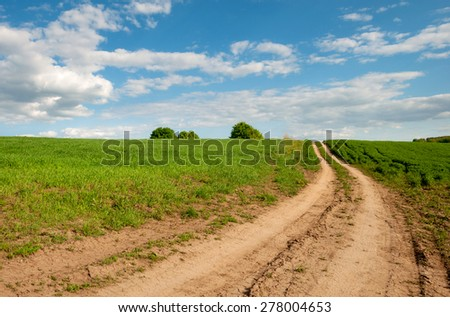 Road in the field. Summer Landscape - stock photo
