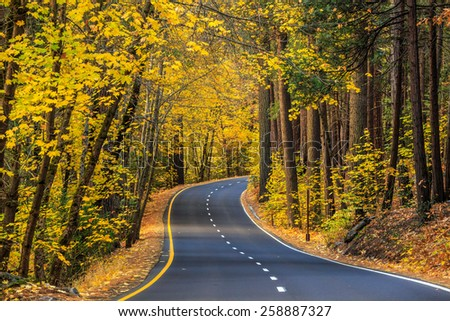 road in Yosemite national park fall season, California - stock photo