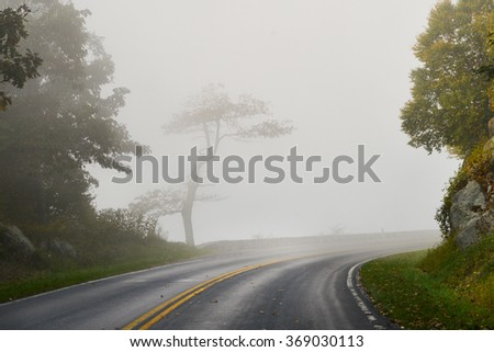 Road into fog - stock photo