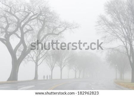 Road into foggy morning - stock photo