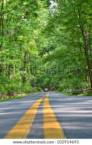 Road into forest in Washington DC - stock photo