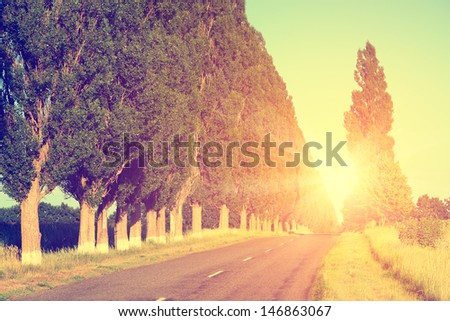 Road landscape - stock photo