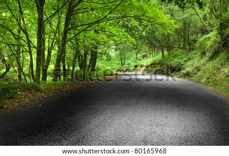 Road mountain at the National Park - stock photo