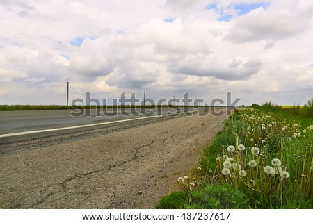 road stretches into the distance to the horizon. Roadsides covered with grasses and white fluffy dandelions. Beautiful sky with clouds beautiful. Summer day. Natural background.  - stock photo