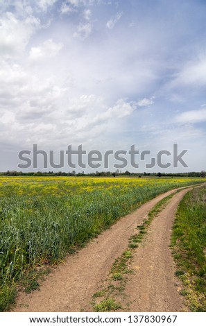 Road the landscape - stock photo
