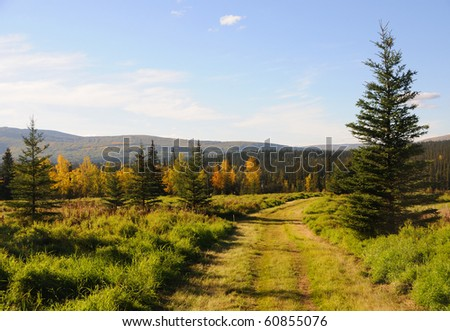 Road Through a Meadow - stock photo