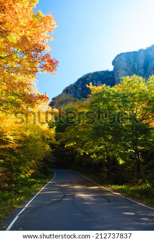Road through autumn trees, Stowe Vermont, USA - stock photo