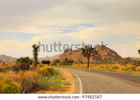 Road through Joshua Tree National Park. California, USA. - stock photo