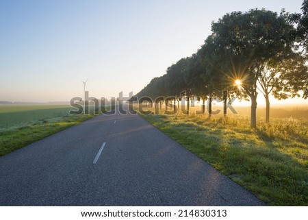 Road through the countryside at sunrise  in summer - stock photo