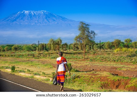Road to Kilimanjaro - stock photo