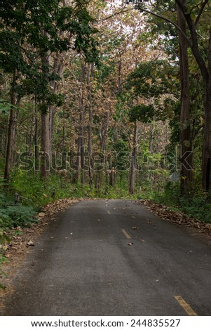 road to nature with beautiful and relax moment some at Lumphun Thailand - stock photo