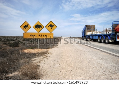 Road train on the Eyre Highway, Nullarbor Plain, including iconic sign look out for camels, kangaroos, wombats. This part of the Nullarbor is known as the Treeless Plain.  - stock photo