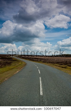 Road winding it's way through the New Forest national park. Vertical. - stock photo