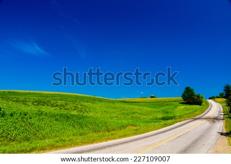 Road with a cornfield in rural New York, USA - stock photo