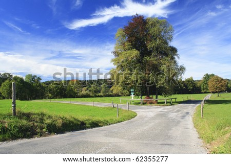 road with colorful trees in a meadow, german - stock photo