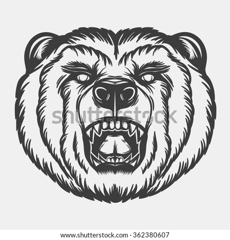 Roaring bear's head for your design. - stock photo