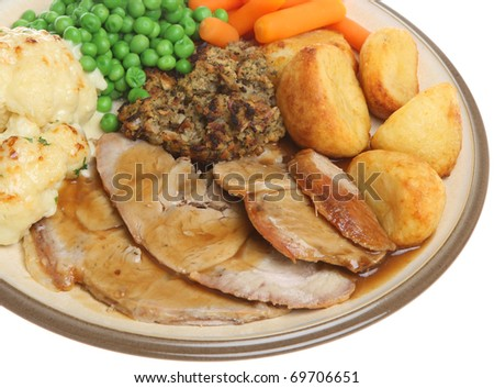 Roast pork dinner - stock photo