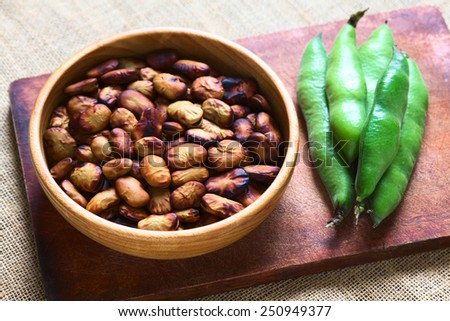 Roasted broad beans (lat. Vicia faba) a Bolivian snack in wooden bowl with fresh broad bean pods on the side, photographed with natural light (Selective Focus, Focus one third into the roasted beans) - stock photo